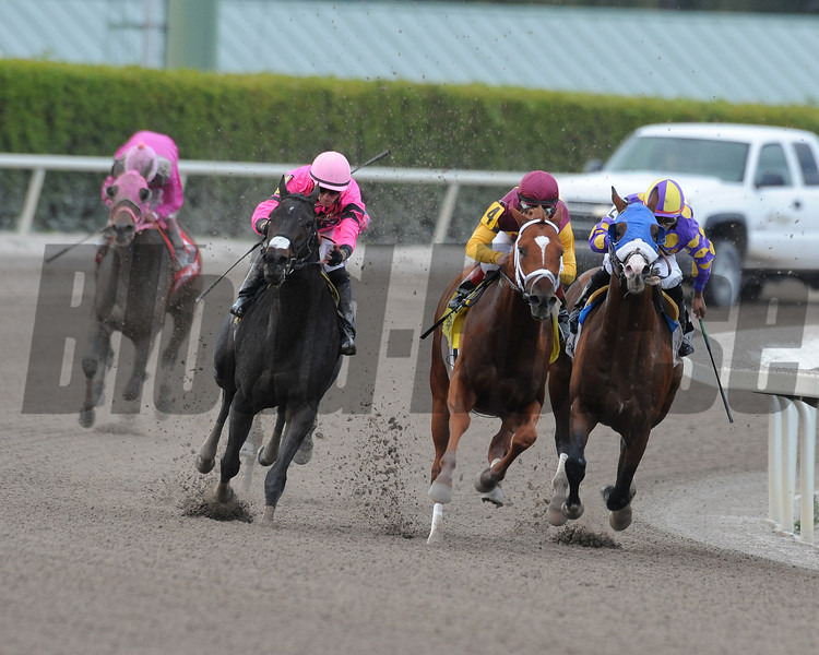 Discreet Dancer wins the 2013 Gulfstream Park Handicap.<br /> Coglianese Photos/Eleanor Gustason