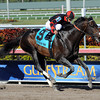 Cigar Street wins the 2013 Skip Away.<br /> Coglianese Photos/Courtney Heeney