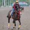 Trinniberg - Gulfstream Park, January 23, 2013<br /> Coglianese Photos