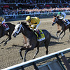 Cross Traffic wins the 2013 Whitney.<br /> Coglianese Photos/Chelsea Durand