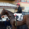 Imagining wins the 2013 Red Smith.<br /> Coglianese Photos