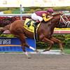 Discreet Dancer wins the 2013 Gulfstream Park Handicap.<br /> Coglianese Photos