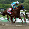 Fast Bullet with jockey Joel Rosario in the irons wins the 35th running of the RTN True North at Belmont Park in Elmont, N.Y. June 8, 2013.  Photo by Skip Dickstein