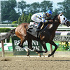 Moreno wins the 2013 Dwyer Stakes.<br /> Coglianese Photos/Chelsea Durand
