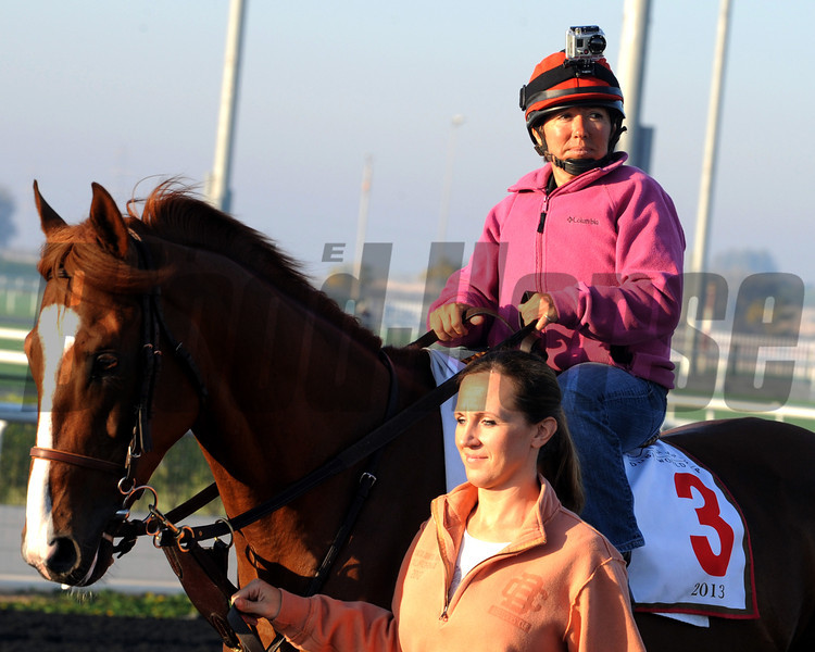 Dullahan<br /> Dubai, March 2013<br /> Dave Harmon Photo