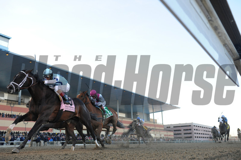 Verrazano wins the 2013 Wood Memorial.<br /> Coglianese Photos