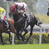 Dominant wins the Hong Kong Vase.<br /> Masakazu Takahashi Photo
