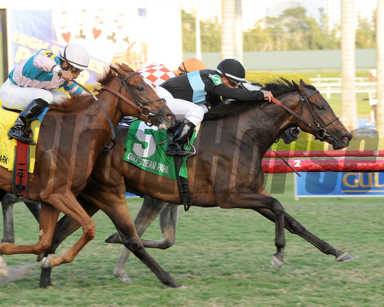 Premier Steps wins Sweetest Chance S.<br /> Coglianese Photos/Leslie Martin