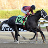 Cairo Prince wins the Nashua Stakes 11/3/2013.<br /> Coglianese Photos