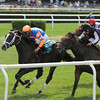 Notacatbutallama wins the 2013 Solar Splendor.<br /> Coglianese Photos/Adam Mooshian