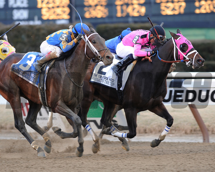 Comma to the Top wins the 2013 Tom Fool.<br /> Coglianese Photos