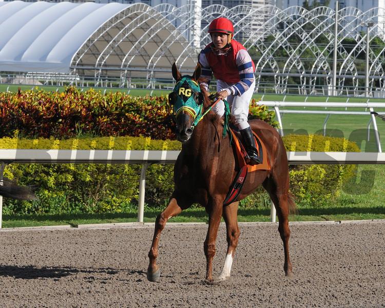 Parranda wins the 2013 Our Dear Peggy Stakes.<br /> Coglianese Photos/Kenny Martin
