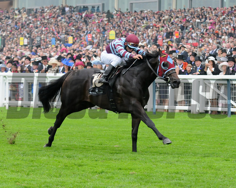 No Nay Never, Joel Rosario up wins the Norfolk Stakes, Royal Ascot; UK, photo by Mathea Kelley; 6/20/13
