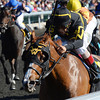 Ruslana, John Velazquez up, wins a 2yr old maiden race, Keeneland Race Course; Lexington; photo by Mathea Kelley; 10/11/13;