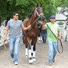 Sweet Whiskey - Saratoga August 29, 2013.<br /> Coglianese Photos/Susie Raisher