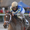 Candy Kitty wins the 2013 Wait a While Stakes.<br /> Coglianese Photos/Kenny Martin