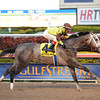 Graydar wins the 2013 Donn Handicap.<br /> Coglianese Photos/Leslie Martin