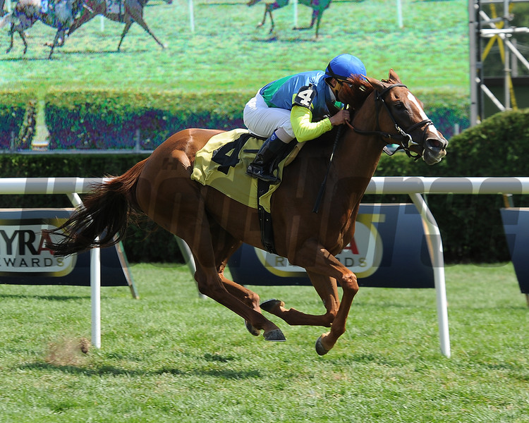 Dayatthespa wins the 2013 Yaddo Stakes.<br /> Coglianese Photos