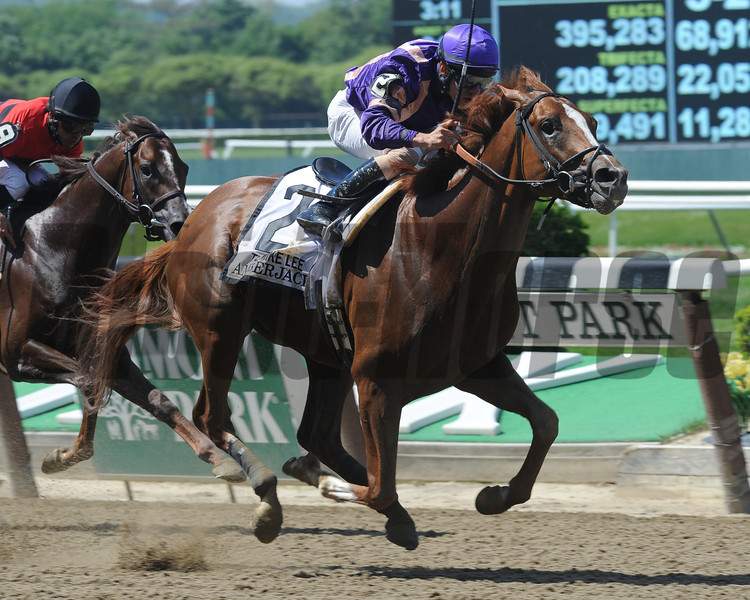 Amberjack wins the 2013 Mike Lee.<br /> Coglianese Photos