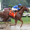 Strapping Groom wins the 2013 Forego. <br /> Coglianese Photos
