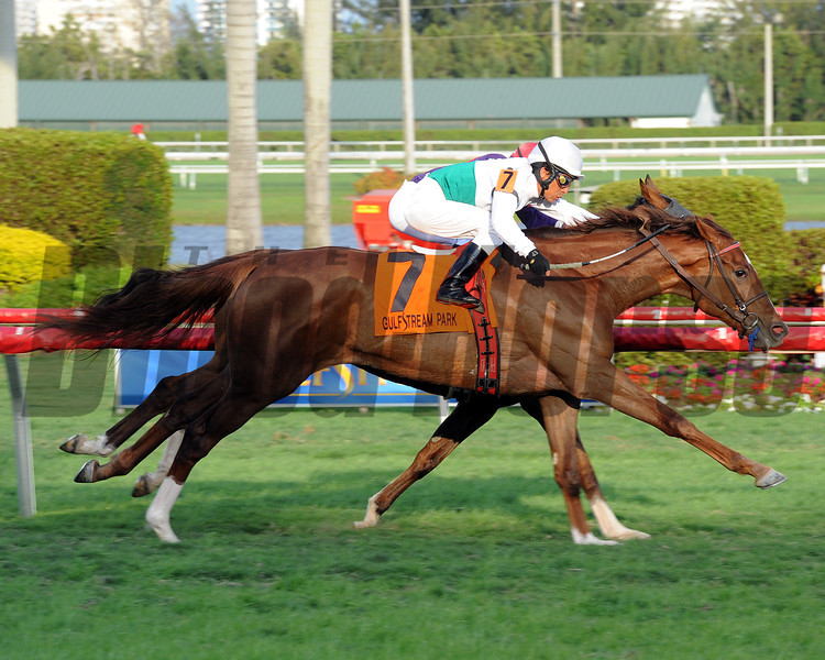 Kitten's Point wins the 2013 Herecomesthebride Stakes.<br /> Coglianese Photos