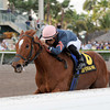 golden mystery hurricane bertie <br /> Photos by Coglianese Photos/Susie Raisher