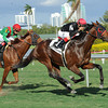 Point of Entry wins the 2013 Gulfstream Park Turf Handicap.<br /> Coglianese Photos/Leslie Martin