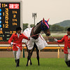 Meisho Mambo wins the Yushun Himba in Japan.<br /> Photo by Naoji Inada