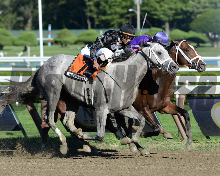 Front-running Corfu nipped Wired Bryan by a bare nose in a desperate finish to the $200,000 Saratoga Special (gr. II).<br /> Coglianese Photos