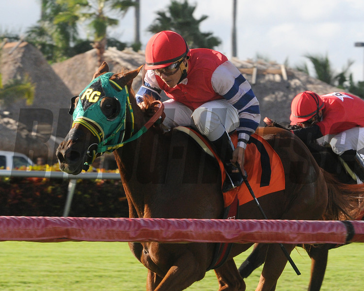 Parranda wins the 2013 Our Dear Peggy Stakes.<br /> Coglianese Photos/Kenny Martin