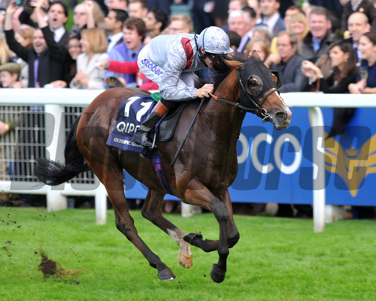 Olympic Glory, Richard Hughes up, wins the QE11 Stakes British Champions Day, Ascot Racecourse, England, 10/19/13, photo by Mathea Kelley