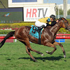Twilight Eclipse wins the 2013 Pan American.<br /> Coglianese Photos/Leslie Martin