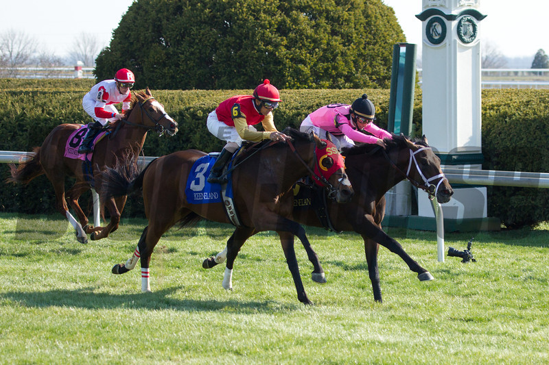 John Velazquez rode Jack Milton to victory in the 25th running of The Transylvania (Grade III) at Keeneland on April 5, 2013.  Velazquez is on the far horse with hot pink and black silks.<br /> Photo by Mark Mahan