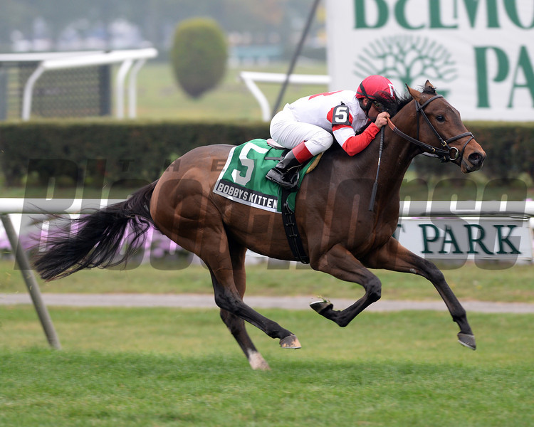 Bobby's Kitten wins the Pilgrim Stakes.<br /> Coglianese Photos