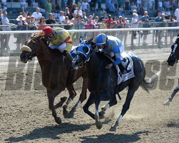 Clear Pasaj wins the 2013 Dancing Renee.<br /> Coglianese Photos