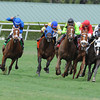 Regalo Mia wins the 2013 Florida Sunshine Millions Filly and Mare Turf.<br /> Coglianese Photos/Eleanor Gustafson