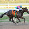 Itsmyluckyday wins the 2013 Holy Bull.<br /> Coglianese Photos/Leslie Martin