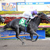 Clearly Now wins the 2013 Swale Stakes.<br /> Coglianese Photos