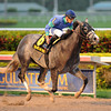 Singanothersong wins the Mr. Prospector Stakes.<br /> Coglianese Photos/Lauren King