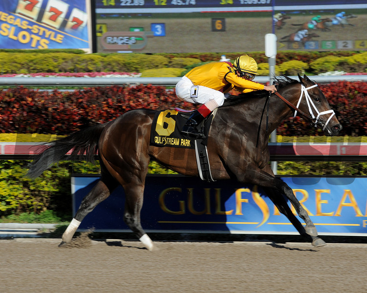 Kauai Katie wins the 2013 Forward Gal.<br /> Coglianese Photos/Leslie Martin