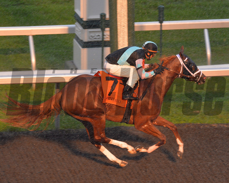 Supersky wins at Keeneland 10/5/2013.<br /> Mathea Kelley Photo.