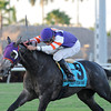 Mucho Mas Macho wins the 2013 Ft. Lauderdale Stakes.<br /> Coglianese Photos/Kenny Martin