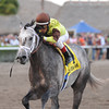 Graydar wins the 2013 Donn Handicap.<br /> Coglianese Photos