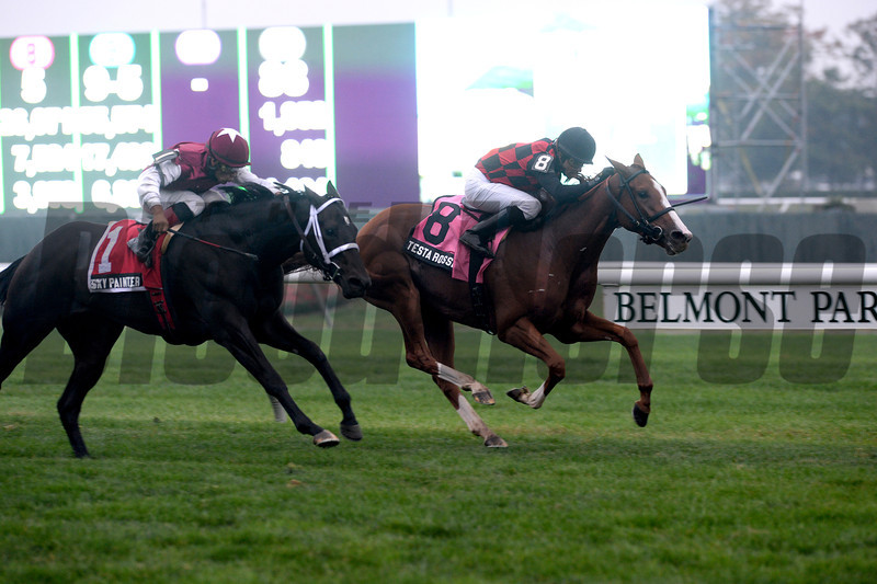 Testa Rossi wins the Miss Grillo Stakes.<br /> Coglianese Photos