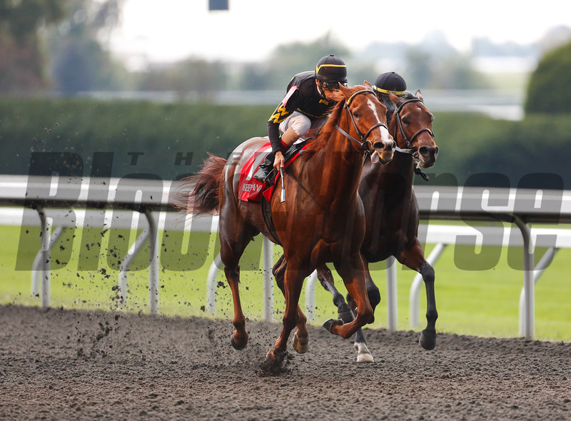 Judy the Beauty, outside, with John Velazequez aboard wins the 33rd Running of The Thoroughbred Club of America Grade II stakes at Keeneland on October 5, 2013.<br /> Mark Mahan Photo