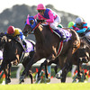 Meisho Mambo wore down tiring front-runner Sekisho with a ground-gobbling outside rally and captured the Shuka Sho (Jpn-I), the final jewel in Japan's Triple Crown for fillies, Oct. 13 at Kyoto.<br /> Photo by Masakazu Takahashi