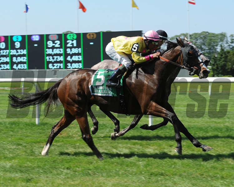 Shakeira wins the 2013 Mount Vernon Stakes.<br /> Coglianese Photos