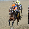 Stopchargingmaria wins the 2013 Demoiselle.<br /> Coglianese Photos/Chelsea Durand