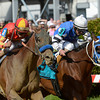 Fiftyshadesofhay (left) wins the 2013 Black-Eyed Susan.<br /> Skip Dickstein Photo