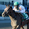 Palace wins the 2013 Fall Highweight.<br /> Coglianese Photos/Joe Labozzetta